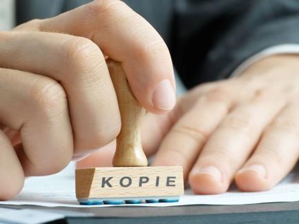 Может ли учредитель составлять и подписывать налоговую отчетность
