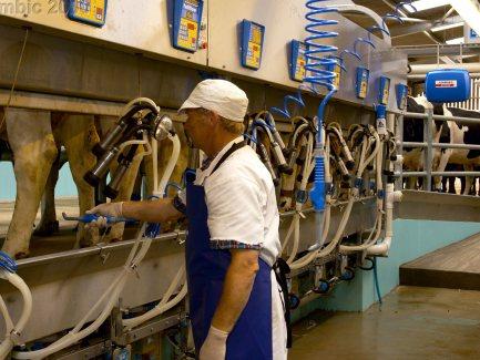 Сельхозпредприятиям утвердили форму заявки на частичную компенсацию стоимости приобретенной техники