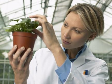 Как обеспечить охрану жизни и здоровья работников сельхозпредприятий