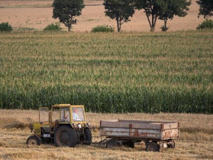 Производство сахара на давальческих условиях: включать ли в Приложение 9 НДС-декларации