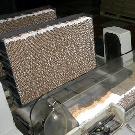Противодействие незаконному производству табачных изделий: утверждена Стратегия