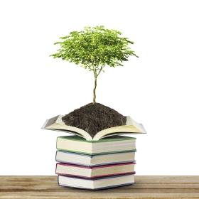 Принят Закон об оценке воздействия на окружающую среду