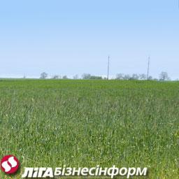 Аграрии выступают за отмену моратория на продажу земель