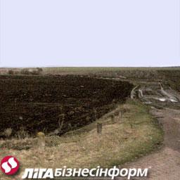Азаров планирует в ближайшие год-два создать рынок земли