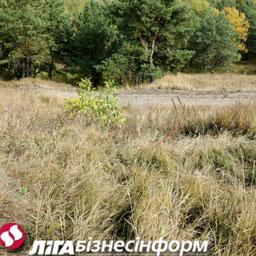 В Киеве и области растут цены на землю