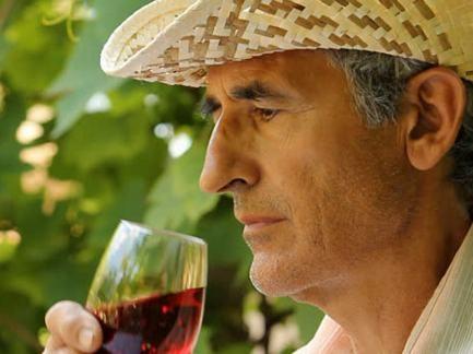 Компании, производящие вино изсобственных материалов, освобождены отлицензии наоптовую торговлю